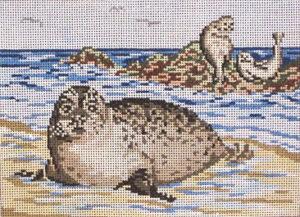 1101-Seals at Beach 265–+